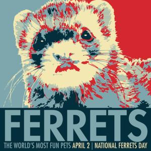 National Ferret Day